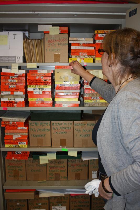 Ann Blomdalh på Hälsinglands Museum visar ett arkiv med del av Hildings bilder osorterade bilder