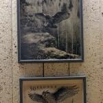 Berguven landar - på foto och frimärke