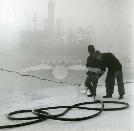 Hamnarbetare, slangdragare, Hudiksvalls hamn, januari 1950.