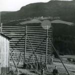 Hässjning på höghässja, Klärke, Indalsälven, 30 juli 1957.