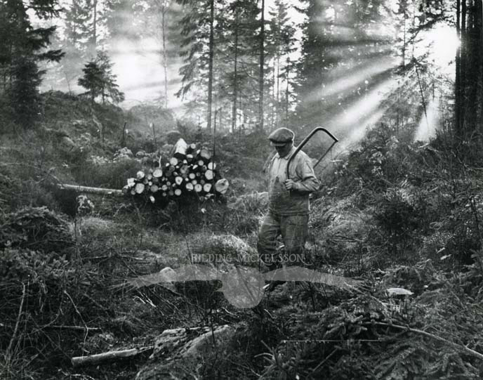 Vårmorgon i vedhuggartid, Rengsjö, 1948.