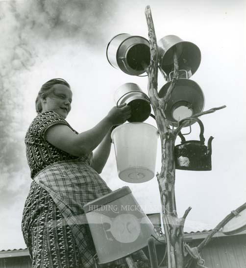Petra vid kärlstället, Keinovuopio, augusti 1961, 2.