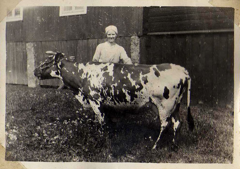 Sally med ko.