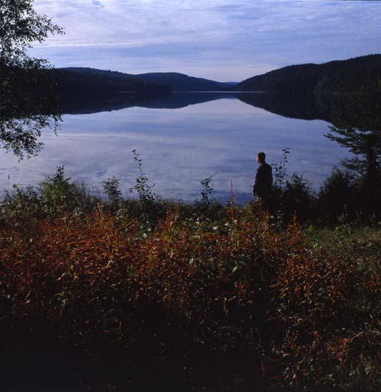 41453 Lingonresan, 27-28/8 1990. Blankvatten, Ängratörn. Foto: Hilding Mickelsson
