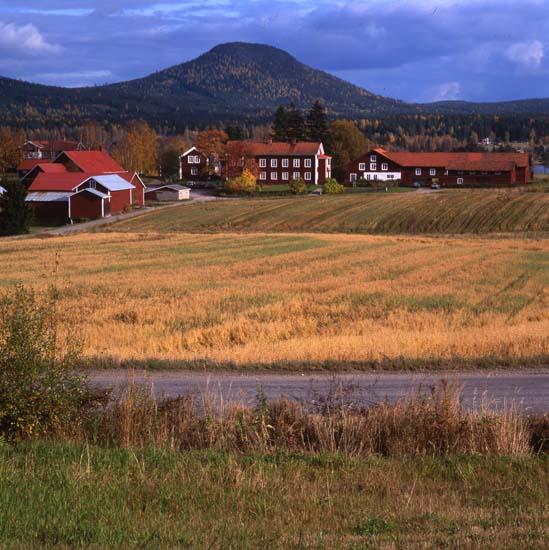 51522 Norrvåga, höst 1992. Foto: Hilding Mickelsson