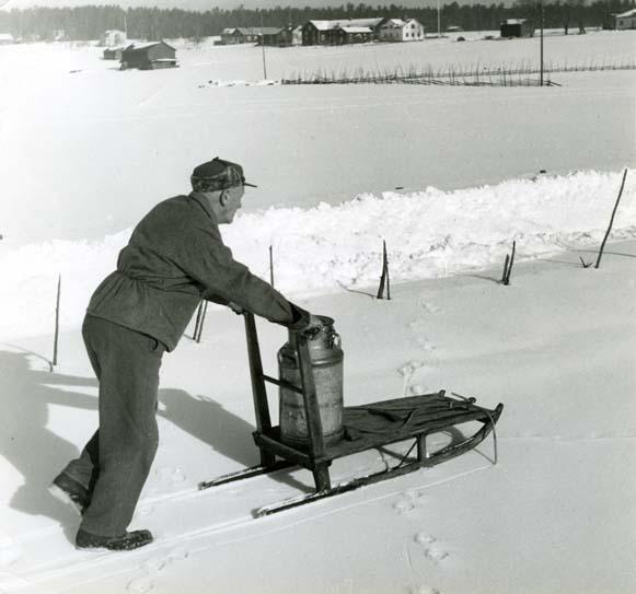 """M 7189: """"På skaren, februari 1957. Hagen översnöad,   Foto: Hilding Mickelsson"""