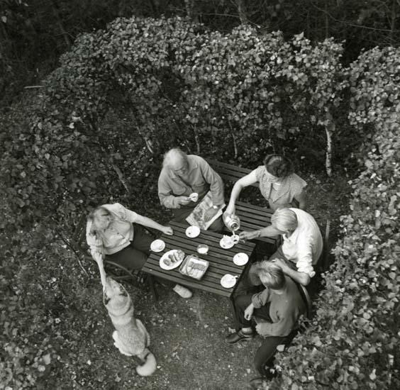 M 10 488: Kaffe i bersån, Ängratörn. Foto Hilding Mickelsson.
