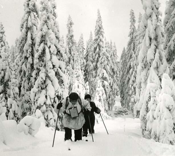 """M 8 867:Det blev """"dagar i vitt"""" i ett kör - visst var snödjupet mycket varierande, för mycket var det dock alla dagar, som här i höglandstrakterna på finnskogen efter västgränsen. Här syns gränsen ovanligt bra!  (Denna gång höll Olle i kameran) Foto: Olle Hildingson"""