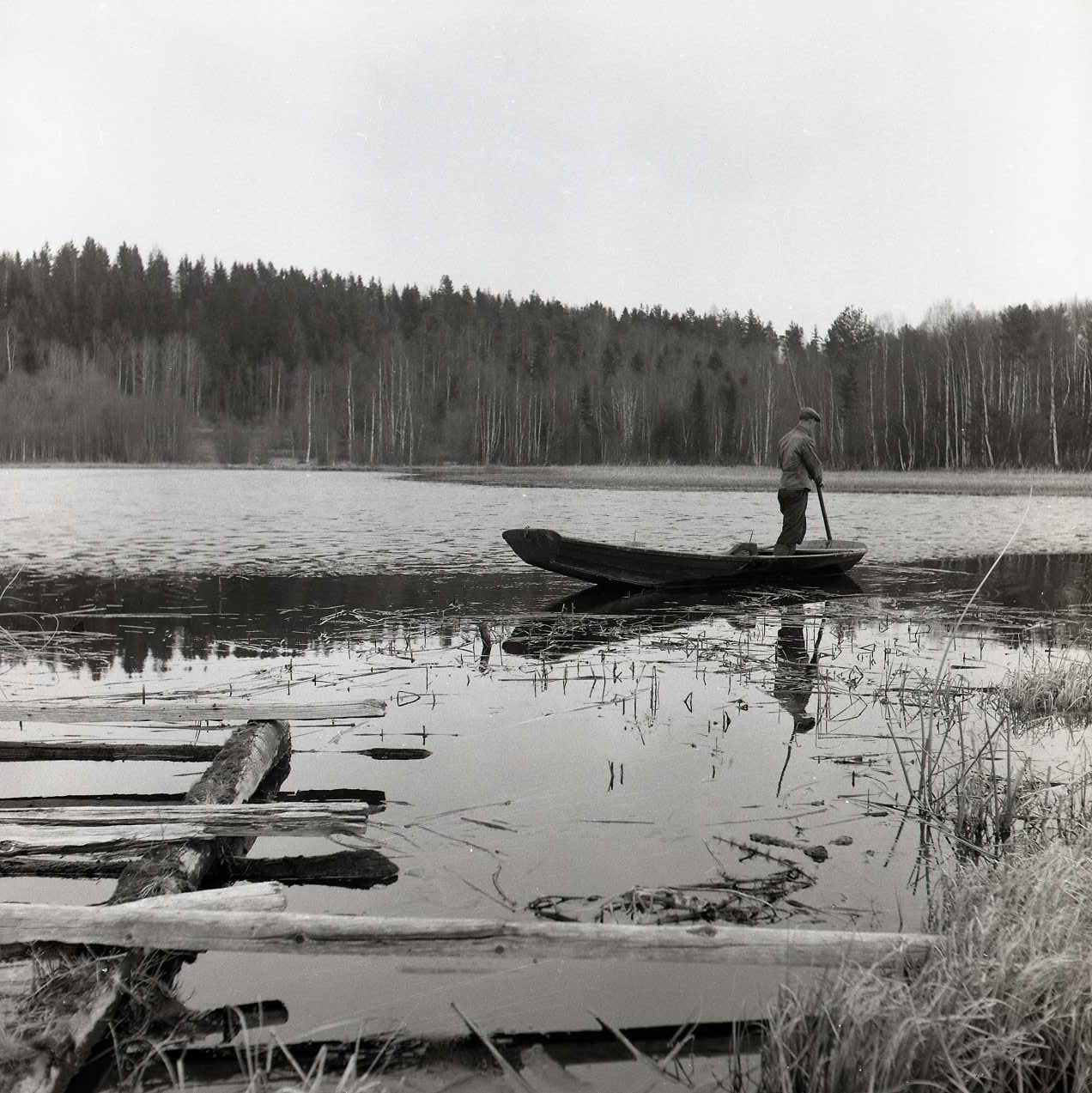 M 115 977: Vårfiske Olers Erik i Bergatjärn 28 april 1954. Foto: Hilding Mickelsson