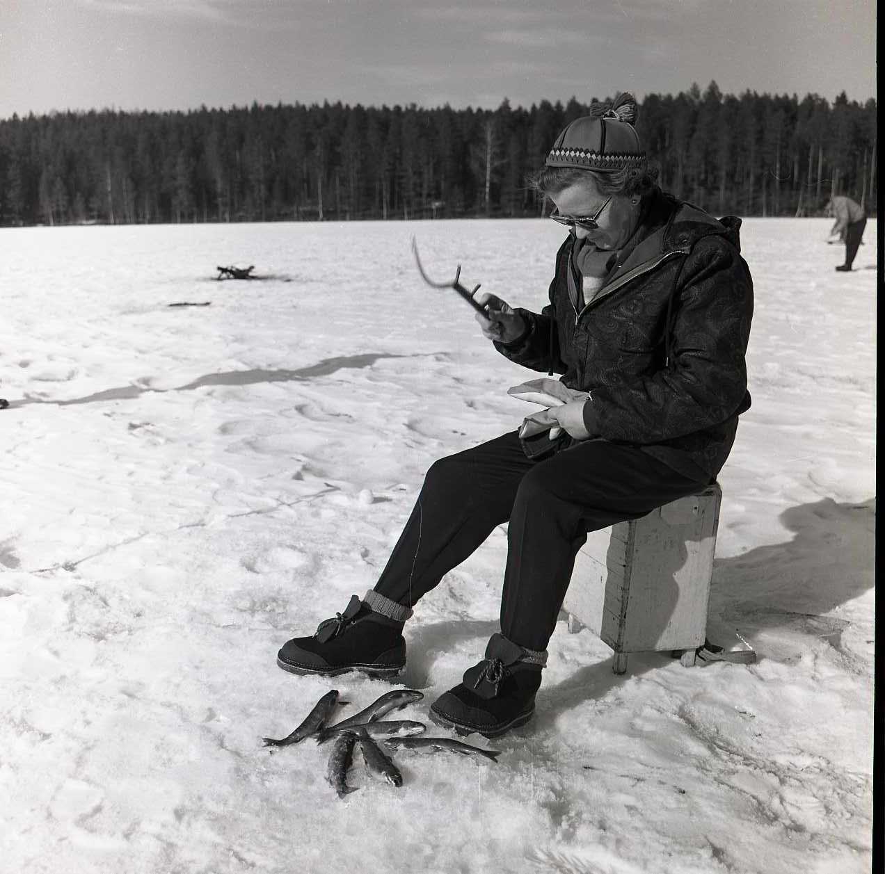 M 116 077: Rödingfiske Bollebergstjärn på Långfredagen, Påsk 1964. Foto: Hilding Mickelsson